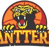 Aalto-Basket 52 – 73 Pantterit